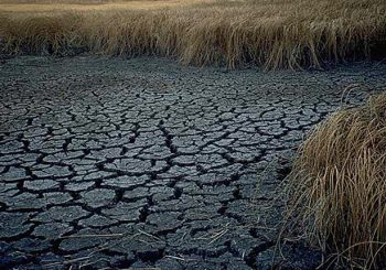 Areas-experincing-drought-could-experince-severe-droughts-as-time-pass-by